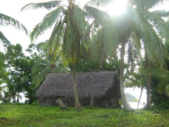 Foto de Rotuma Island