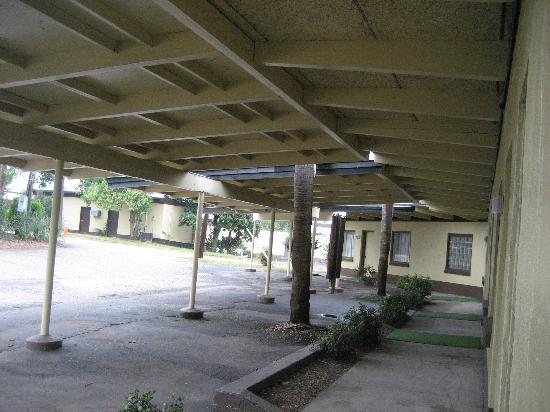South of the Border: pedro's carport