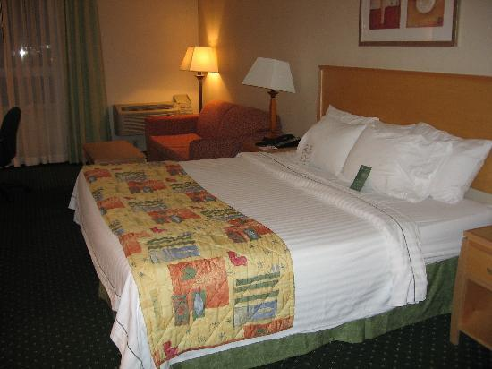 Fairfield Inn & Suites Belleville: King size bed and sofabed