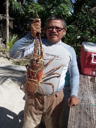 Paraiso Punta Allen : comimos langosta jijijiij