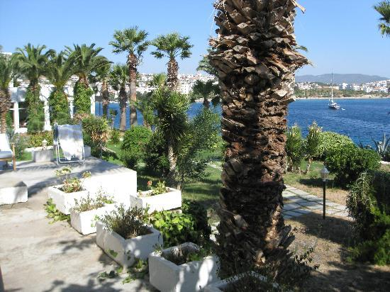 Datca, ตุรกี: Hotel garden
