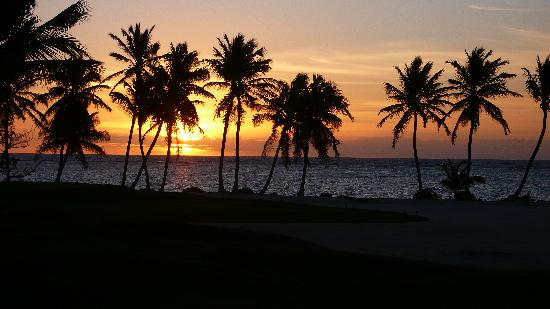 Tortuga Bay Hotel Puntacana Resort & Club: lever du soleil vu du golf