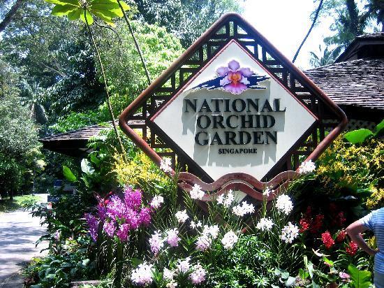 โรงแรม เดอะ ริทซ์ คาร์ลตัน มิลเลเนีย สิงคโปร์: National Orchid Gardden