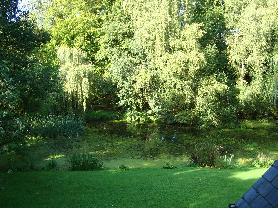 Willowbeck Lodge: View from our room