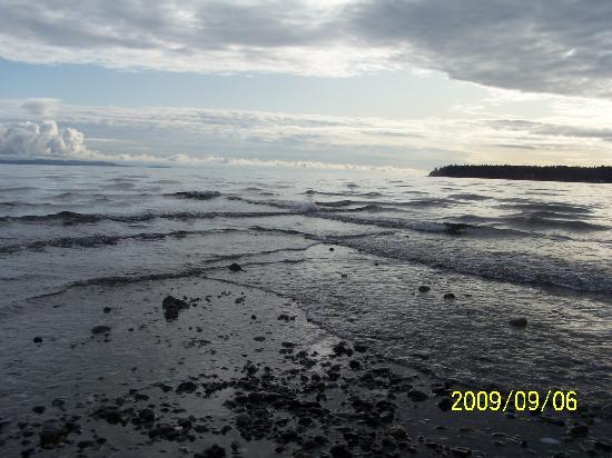 St Andrews Lodge & Glen Cottages: The beach in the evening