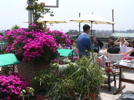 Hotel Excelsior: rooftop garden