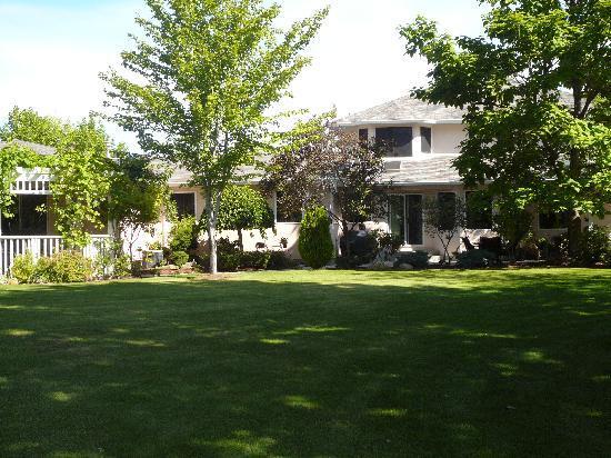 E'Laysa Guesthouse and Vineyard Retreat: Backyard