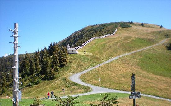 Kohlmais : mountain view