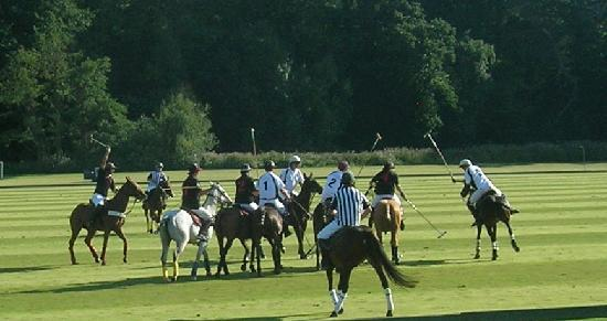Cowdray Castle: Polo Match at River Ground, Cowdray