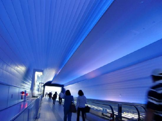 Dazaifu, Japan: 太宰府天満宮から博物館へ続く幻想的なトンネル通路