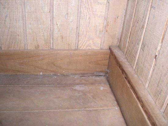 Eastland Suites Hotel & Conference Center of Champaign-Urbana : Dirt on sauna floor