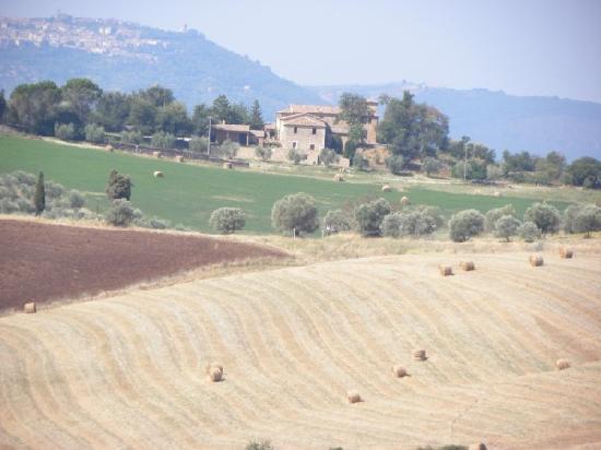 Le Casine di Castello: i colori della campagna