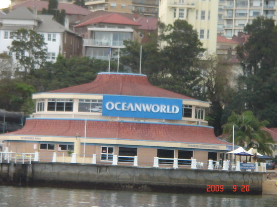 Manly Sea Life Sanctuary: Oceanworld Building from the Warf