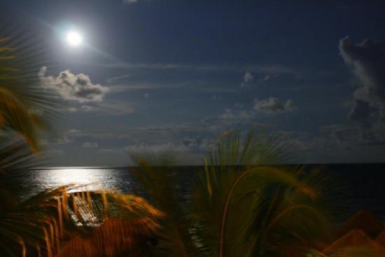 Iberostar Grand Hotel Paraiso : Moon Shine.