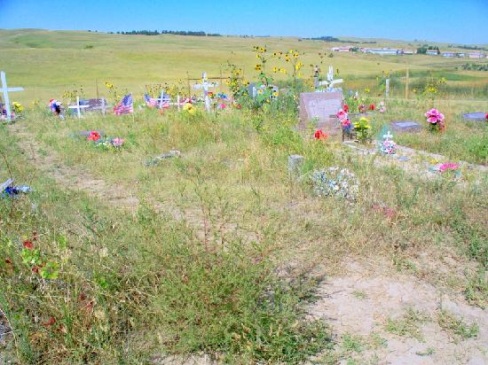 Wounded Knee, SD: Weeds everywhere