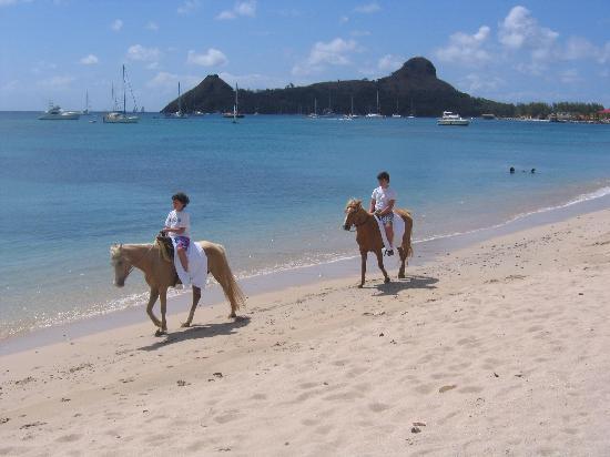 Island Riders : Both Guys