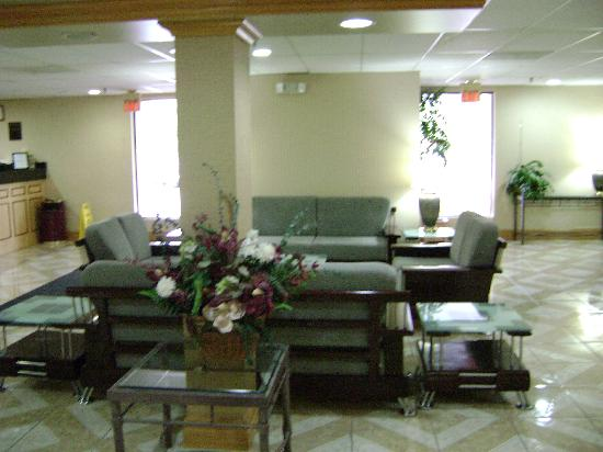 Alexis Inn & Suites Nashville Airport Opryland: Lobby