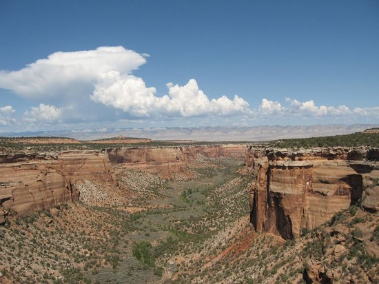 Colorado National Monument: one of many canyon overlooks