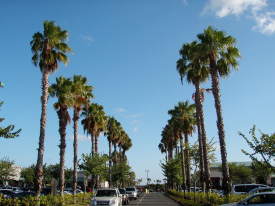Waikele Premium Outlets : ハワイだな~