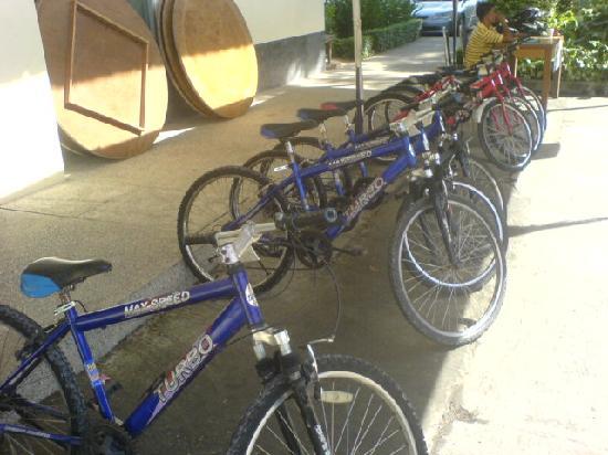 Herb Garden Pattaya : Fahrradverleih
