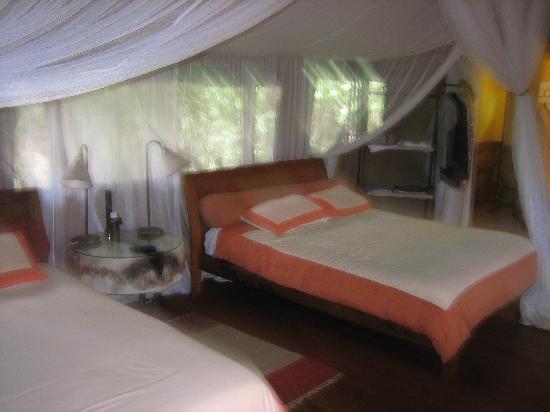 Sanctuary Olonana: The beds in Tent #1 at Olonana