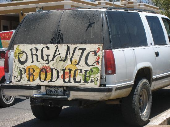 La Alianza: Organic Produce stand in Todos Santos
