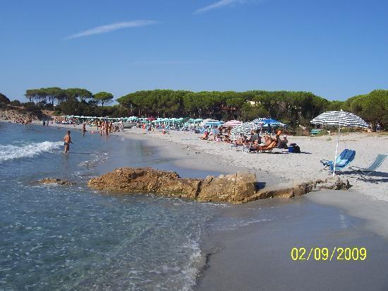 Club Hotel & Residence Le Palme: Mare e spiaggia clienti Le Palme