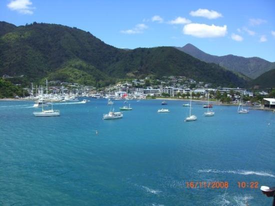 พิกตัน, นิวซีแลนด์: Picton again!  ~Photo courtesy of Theresa~