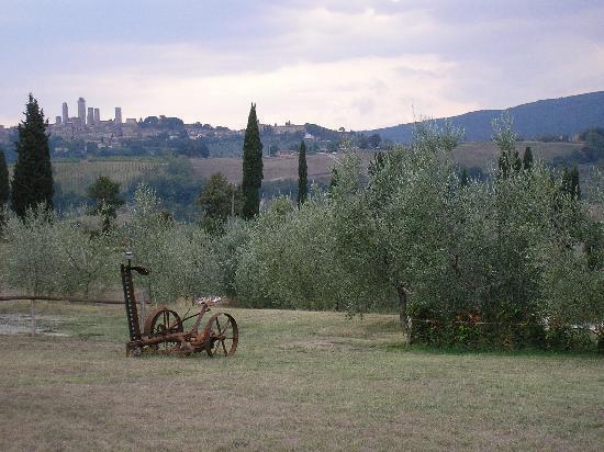 Agriturismo Il Vecchio Maneggio: panorama from the agriturismo