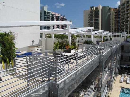 Z Ocean Hotel South Beach Reviews