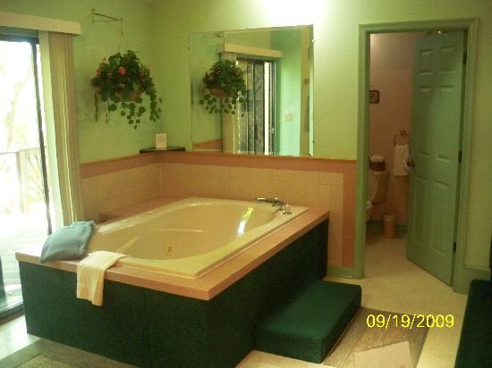 Brookside Cabins: Tub