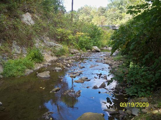 Brookside Cabins: The brook
