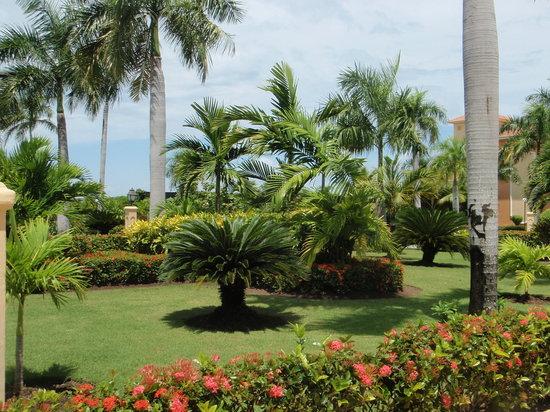 Grand Bahia Principe Bavaro: beautiful grounds well mantained