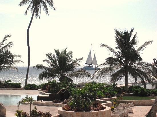 Coco Beach Resort: view from the patio