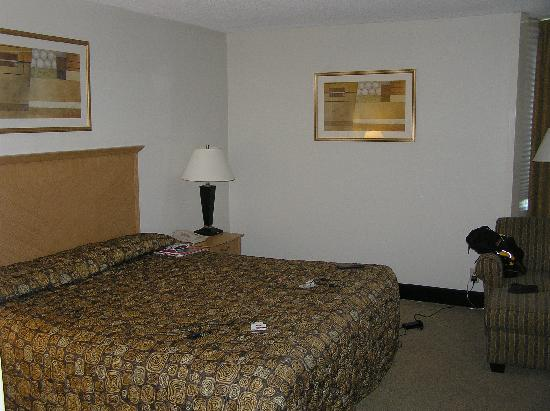 Holiday Inn Raleigh Downtown: The room
