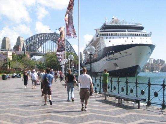 Massive Cruise Ship Docked At Circular Quay  Picture Of