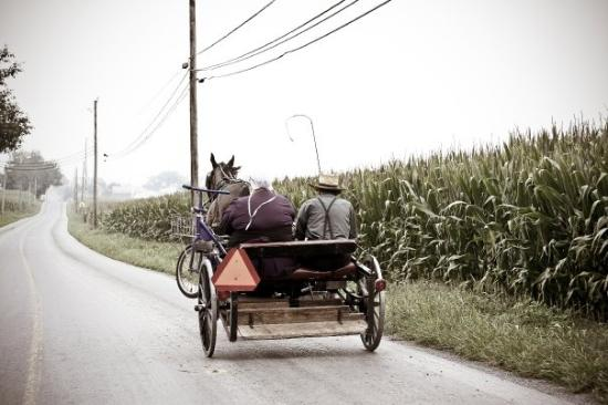Lancaster County, PA: Couple Amish à Paradise.