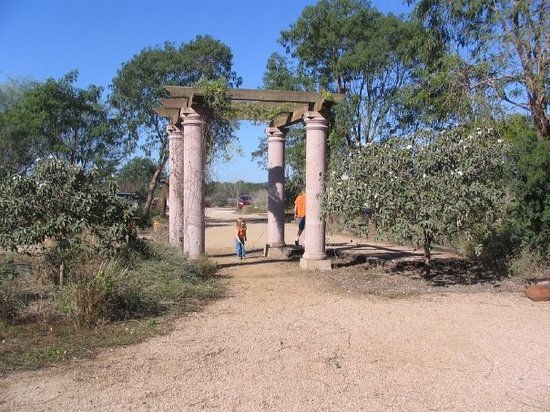 Charming Bentsen Rio Grande Valley State Park: At Butterfly Sanctuary In McAllen TX