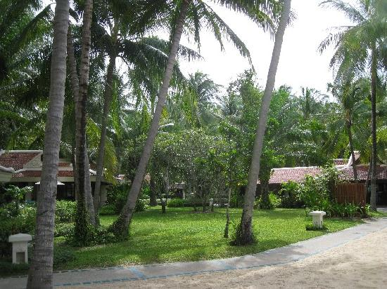 Santiburi Beach Resort & Spa : just close to the beach