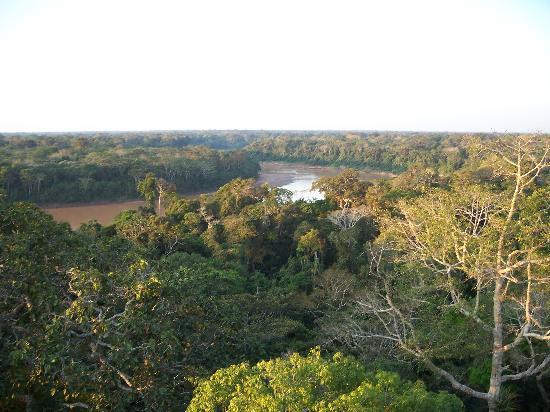 Posada Amazonas: From the tower