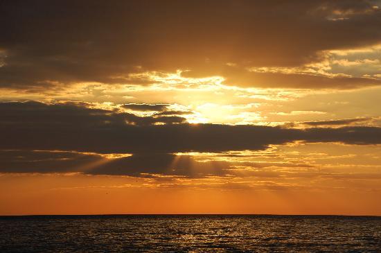 Orchid Key Inn: Sunset in Key West