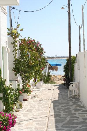 Hotel Palatia : street from hotel to beach