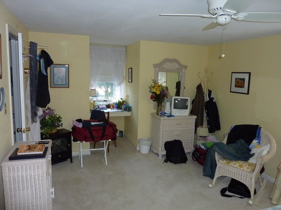 The Lancaster Bed and Breakfast: the nature room