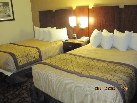 Hotel Moab Downtown : Beds