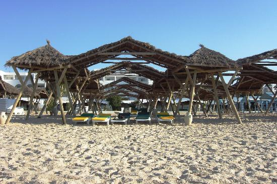 The Orangers Beach Resort & Bungalows: La plage