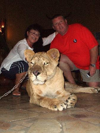 Mara River Safari Lodge: in the lobby