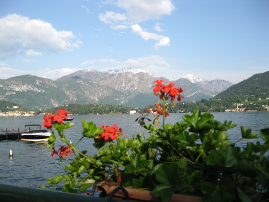 Bellagio, Italy: flowers in menaggio