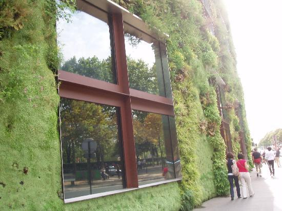Hotel Residence Foch: That buildings got plants growing on i