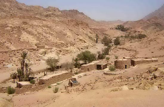 Al Karm Mountains Ecolodge: the Eco Lodge