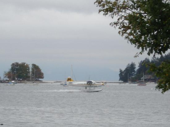 Flying Cloud Bed and Breakfast: Seaplane landing